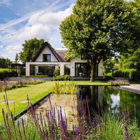 Groen-paarse rust in Capelle aan den IJssel