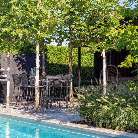 Moderne kleine tuin met zwembad