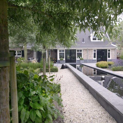 Tuin Met Moderne Waterpartij