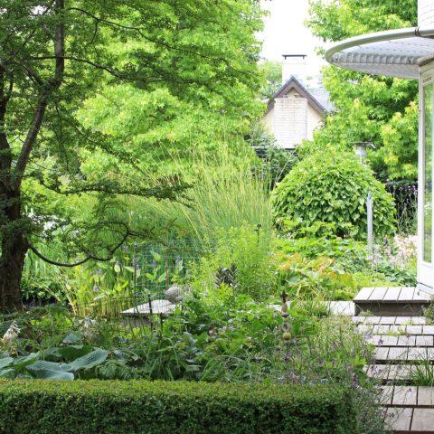 Natuurlijke tuin voor plantenliefhebbers