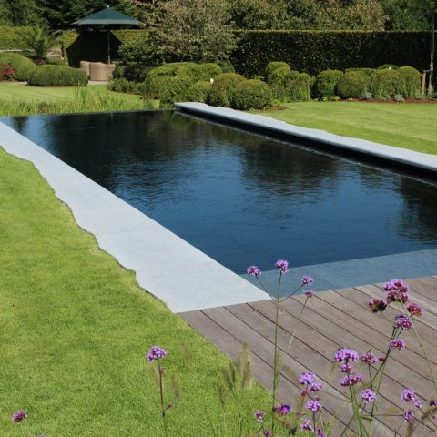 Zwembad design