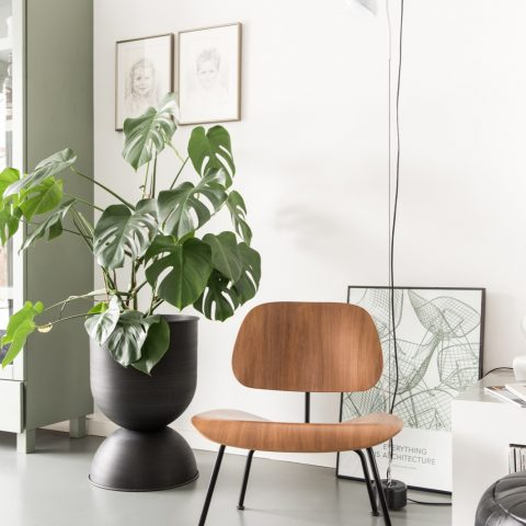 Home couture & modern