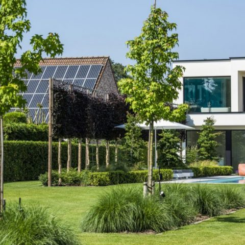 Veelzijdige moderne tuin