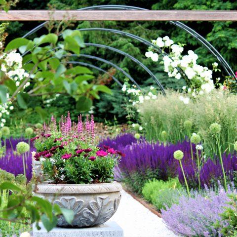 Fleurige oase