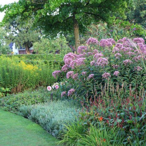 Tuin rond landhuis